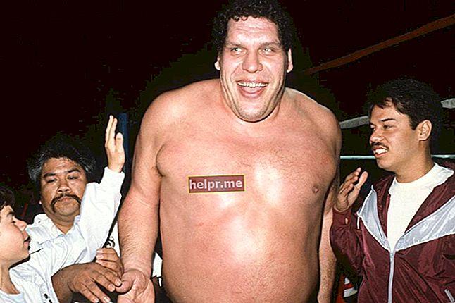 André the Giant Înălțimea, greutatea, vârsta, statisticile corpului